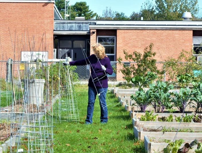 $10k Grant To Build Greenhouse At Coventry Senior Center