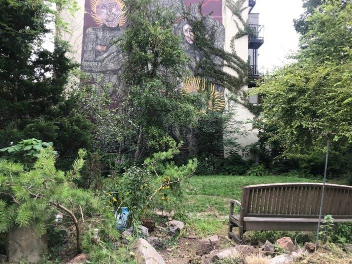 LUNGS — Loisaida United Neighborhood Gardens | The Community