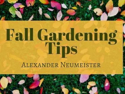 Fall Gardening Tips Hamden Ct Patch