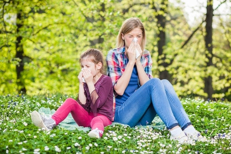 Spring Allergy Onslaught To Worsen In NYC | New York City