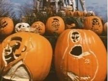 Pier Pumpkin Lights To Be Displayed At Navy Pier Through October