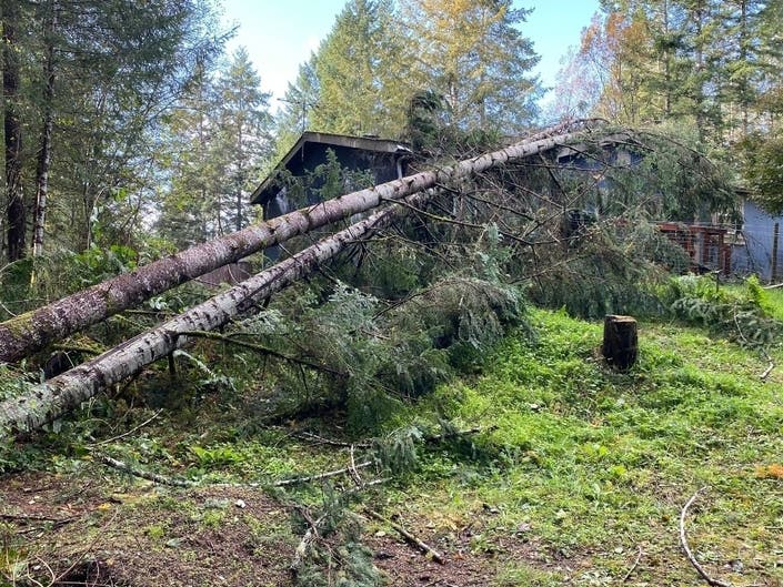 NWS Confirms EF-1 Tornado Touched Down In Shelton Friday