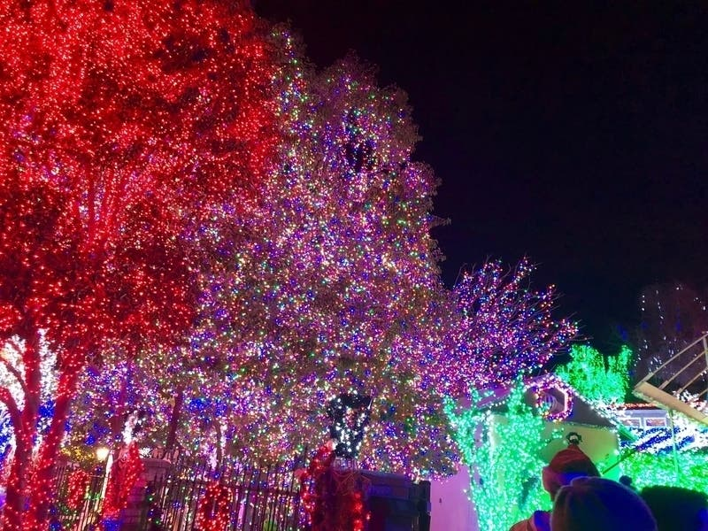 Highland Park Decatur Ga Christmas Lights 2020 Best Christmas Lights In Atlanta: When, Where To View Them