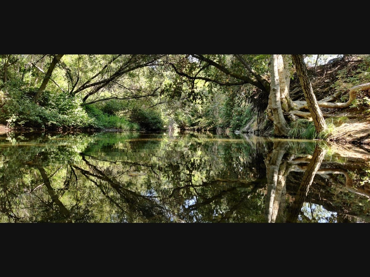 Reflections At Sunol Regional: Photos Of The Week