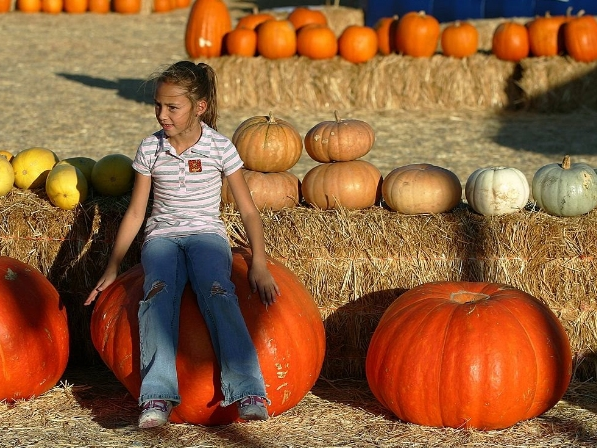 The Biggest Pumpkin In The Patch: Can Hoboken Beat U.S. Record?