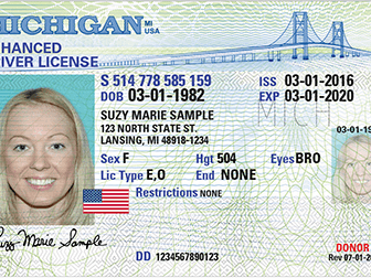 You Have Extra Time To Renew Your License If Expired During The Pandemic |  Detroit, MI Patch