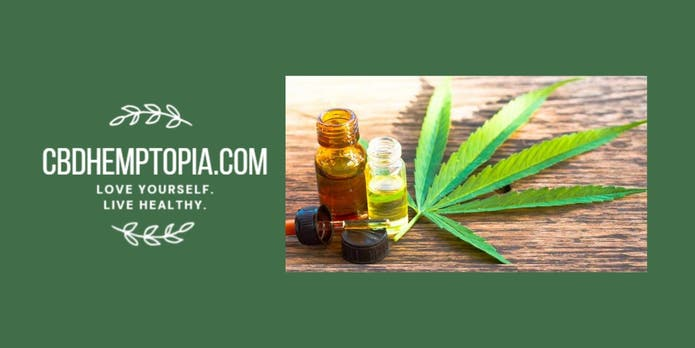 Work From Home Webinar: Expanding CBD Business in Wilmette-Kenil