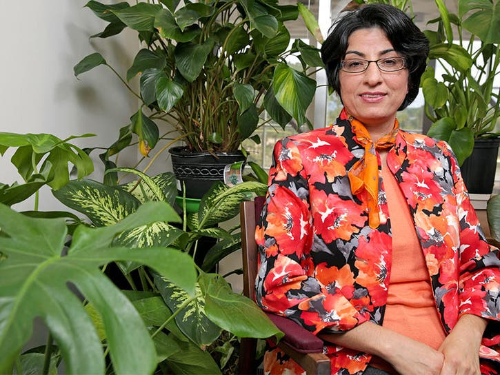 Dr. Azita Amiri has been selected as a Bloomberg Fellow.