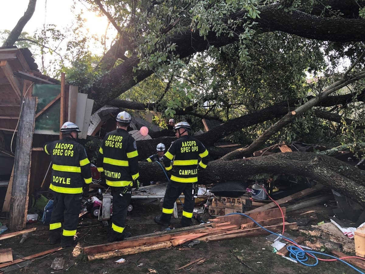 21 Injured When Tree Fell On Garage During Child's Birthday Party