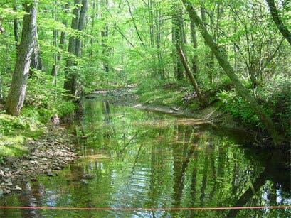 Keep Cobb Beautiful Free Environmental Education - Multiple Dates, E. Cobb