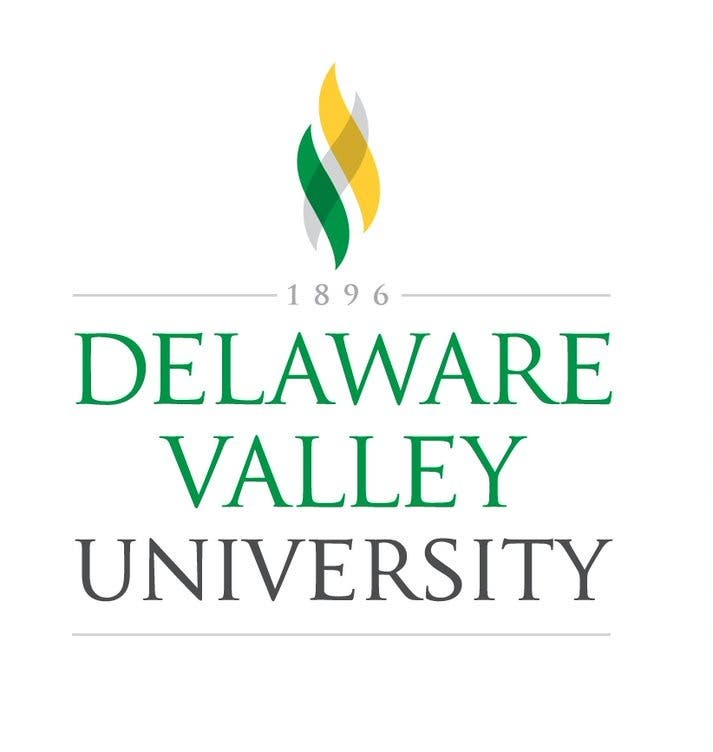 DelVal Launches *NEW*Virtual Fall Non-Credit Design Courses
