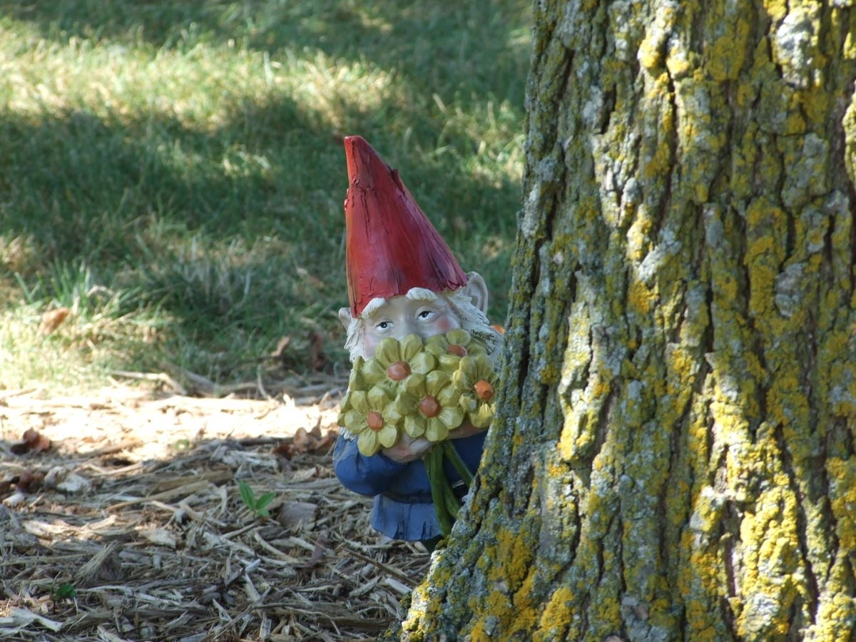 100 Gnomes To Be Hidden in 39 Waukesha Area Parks