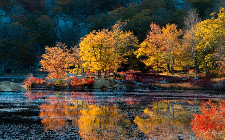Local Color: Fine-art photography from the Lower Hudson Valley