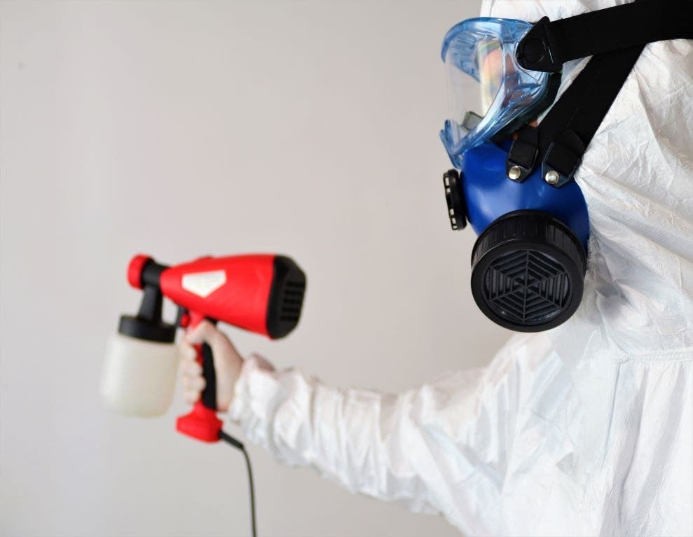 Reasons to Work With a Mold Removal Company