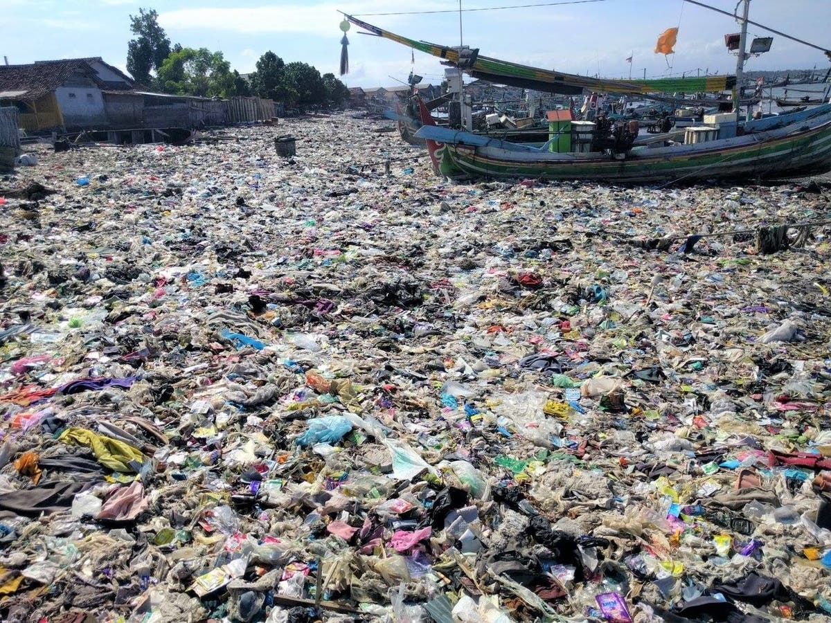 Human Poop Found to Be Full of Plastic | Santa Monica, CA Patch