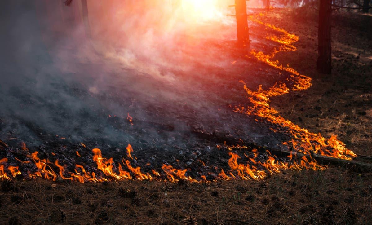 Fires Erupt In Solano County, Visible Across Bay Area | Suisun City