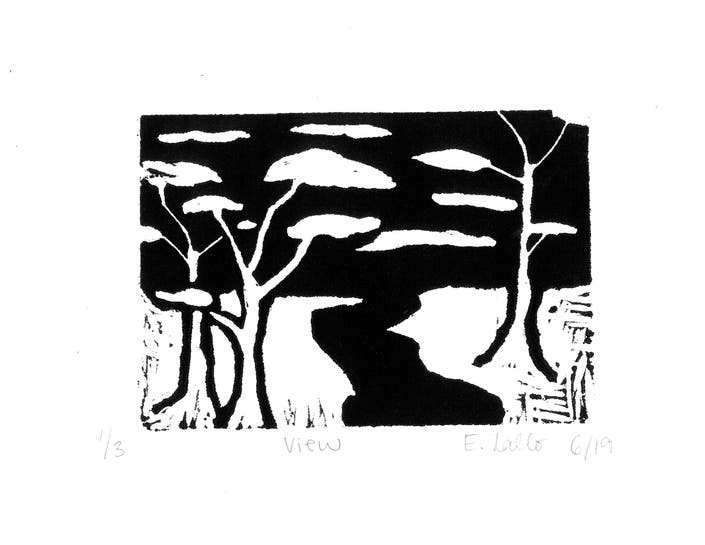 Nature In Black And White Stuart Students Abstract Lino