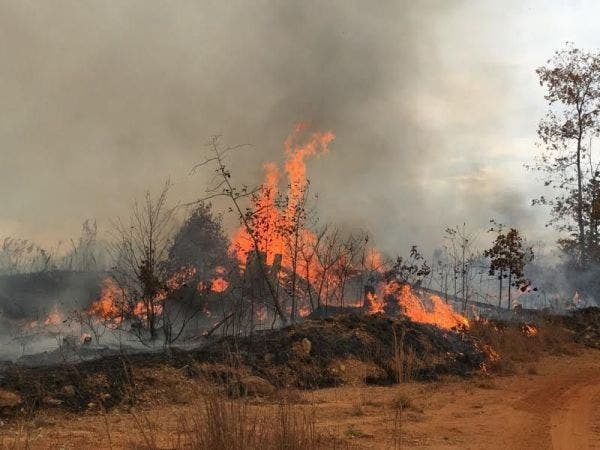 Paulding Wildfire Kids Playing With Lighter Caused Blaze