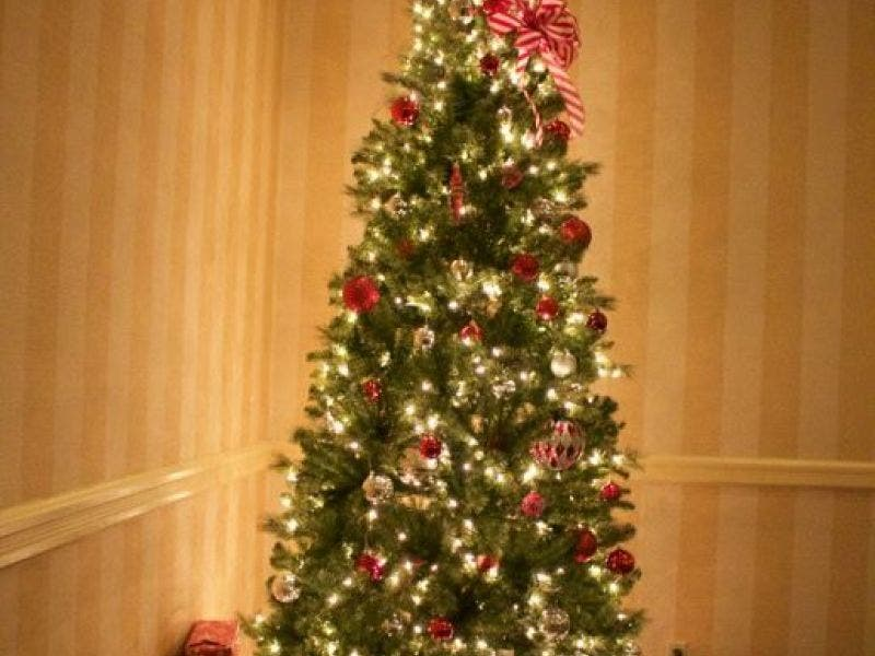 When Does Christmas Tree Collection Begin in Concord?   Concord, NH ...