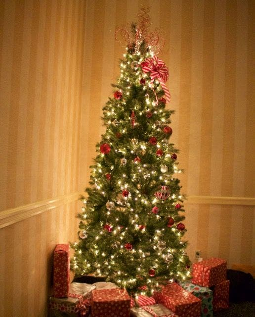 Where Did Christmas Trees Originate.When Does Christmas Tree Collection Begin In Concord