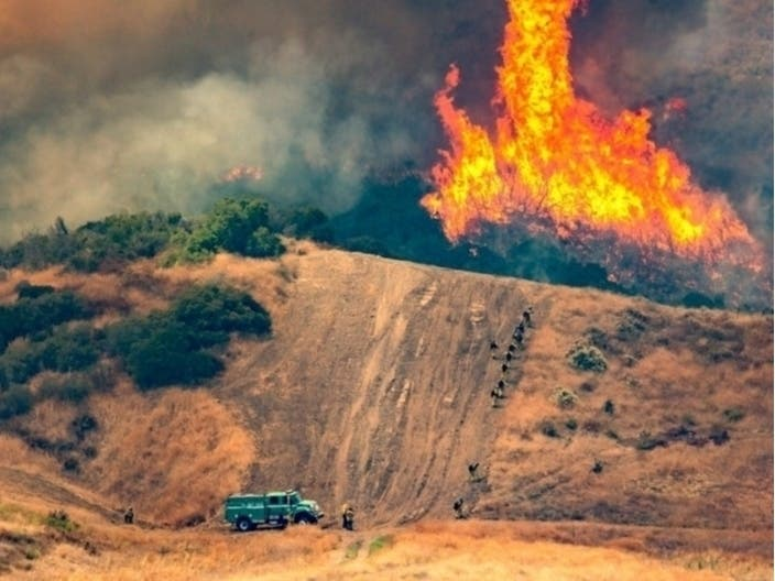 Deadly Boat Fire; Large Wildfires; Deaf Surfing Dog: CA Stories