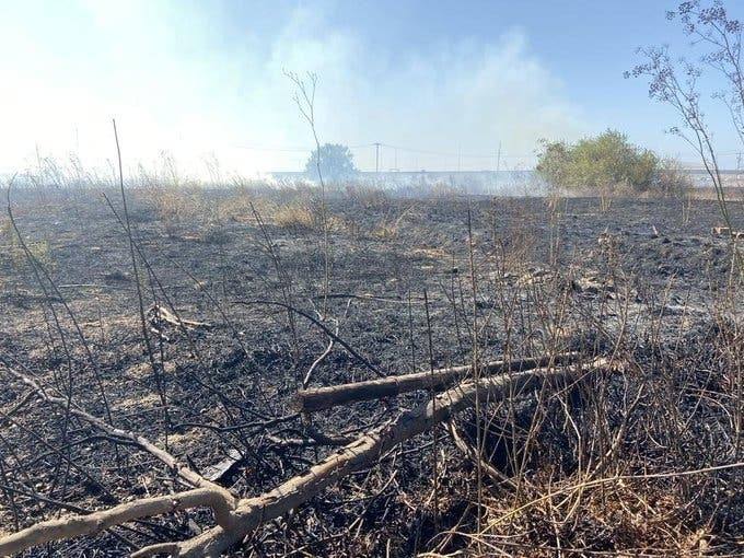 Brush Fires; Cliff Rescue; E-Smoking Products Ban: Patch PM