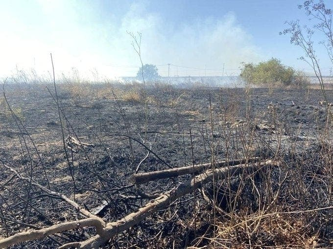 Brush Fires; Cliff Rescue: Carlsbad, San Diego County Police Log