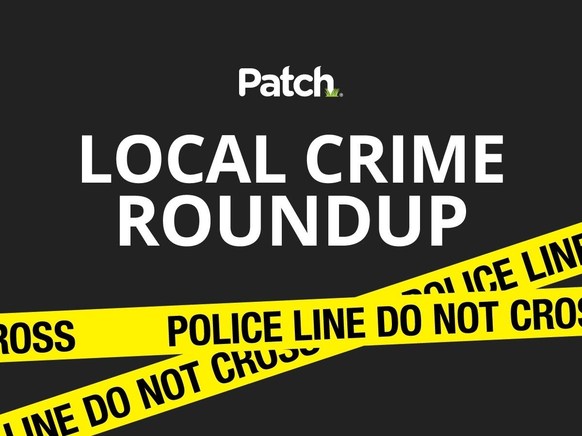 Police Chases; Hit-And-Runs: San Diego County Police Log