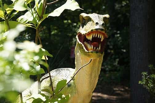 Westchester's Lasdon Park Home To Dinosaur Garden | Bedford