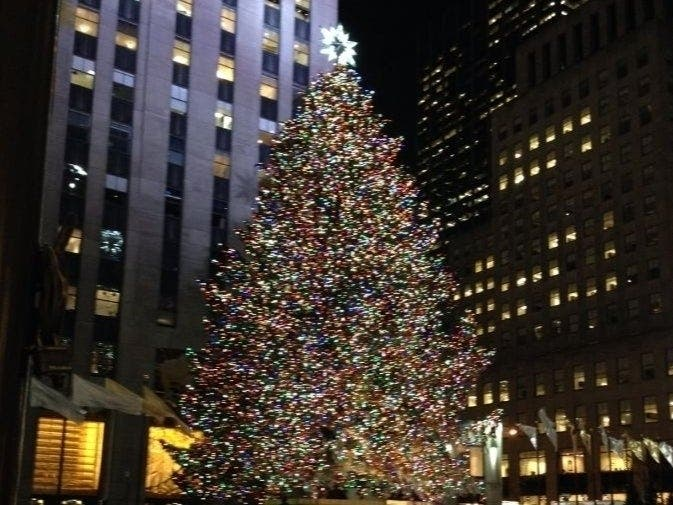 rockefeller center chooses 2020 christmas tree mid hudson valley ny patch chooses 2020 christmas tree