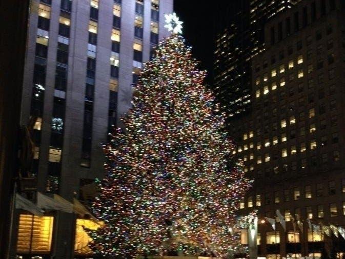 2020 Rockefeller Center Christmas Tree From Hudson Valley | Mid