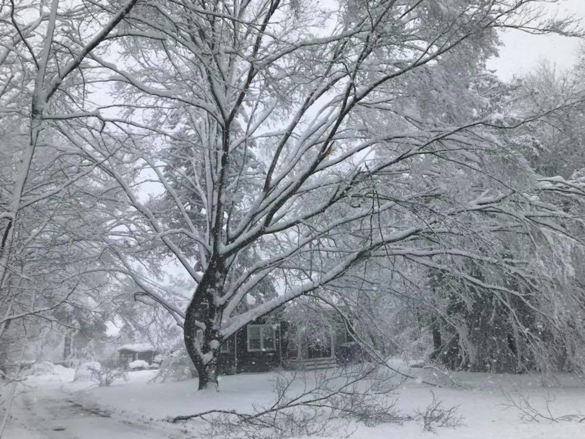 Snow On First Day Of Spring Makes Me >> Another Nor Easter Could Strike On First Day Of Spring Sachem Ny
