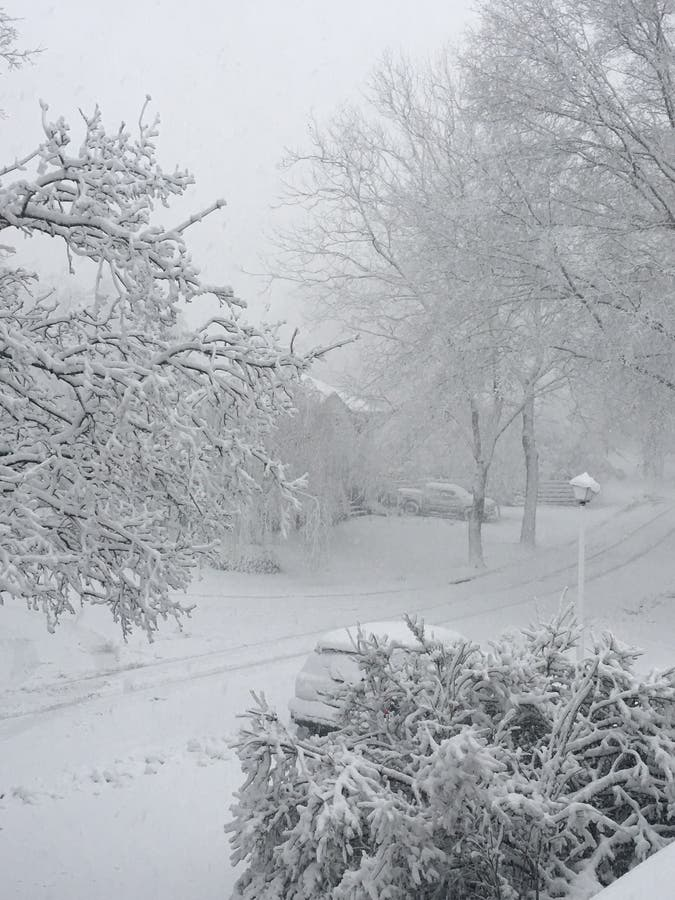 Long Island Weather Forecast: Winter Storm Warnings Issued