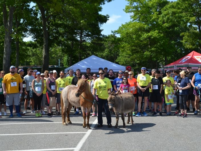 Annual 5K Run/Walk Fur The Animals And Woof Fest Coming Up