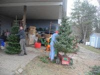 Candy Cane Christmas Tree Farm-1 ...