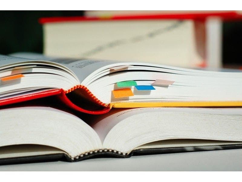 28 New Jersey Colleges, Ranked First To Worst | New
