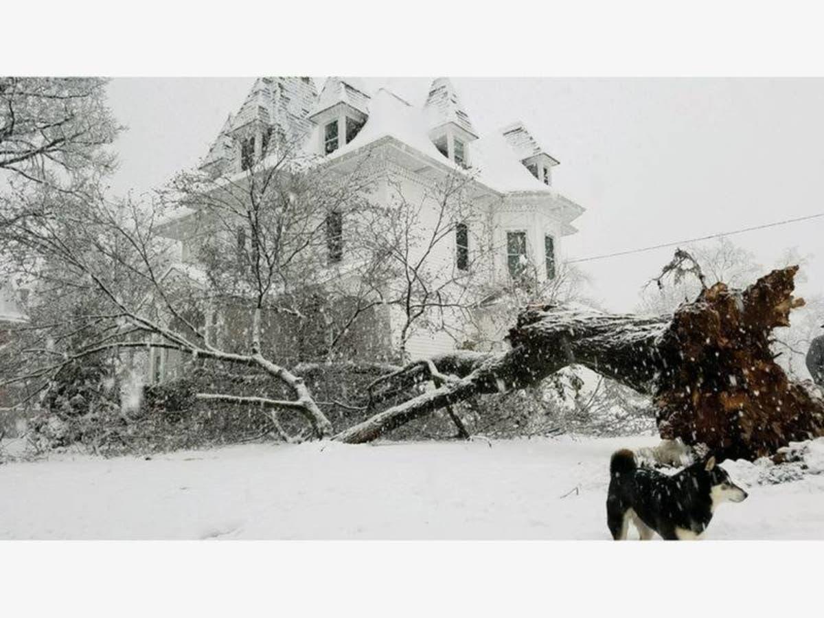 Farmers' Almanac Releases NJ Winter 2019 Forecast: It's A