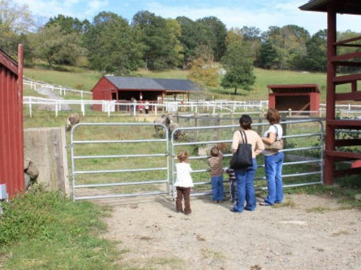 Bats, Goats, Plants, Chores: In The Parks This Weekend