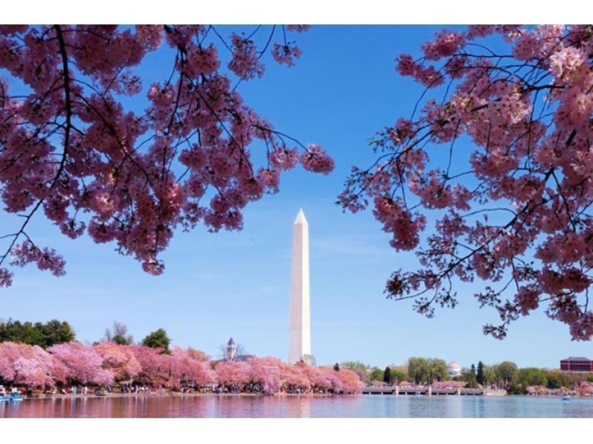 Washington DC Is The No  10 Best Place To Retire