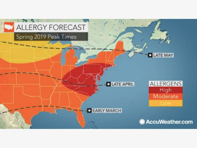 Allergy Forecast: When Sneezing Season Will Peak In MD