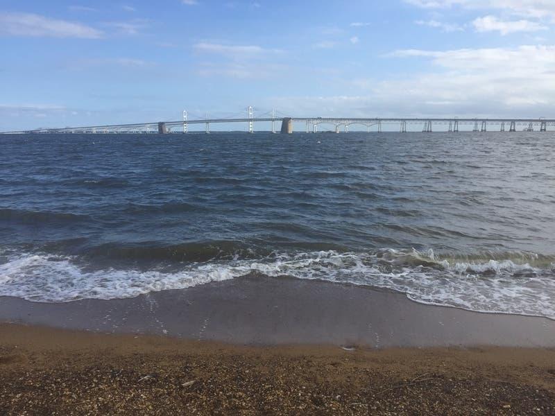 Trump's Proposed Chesapeake Bay Cleanup Cuts Criticized
