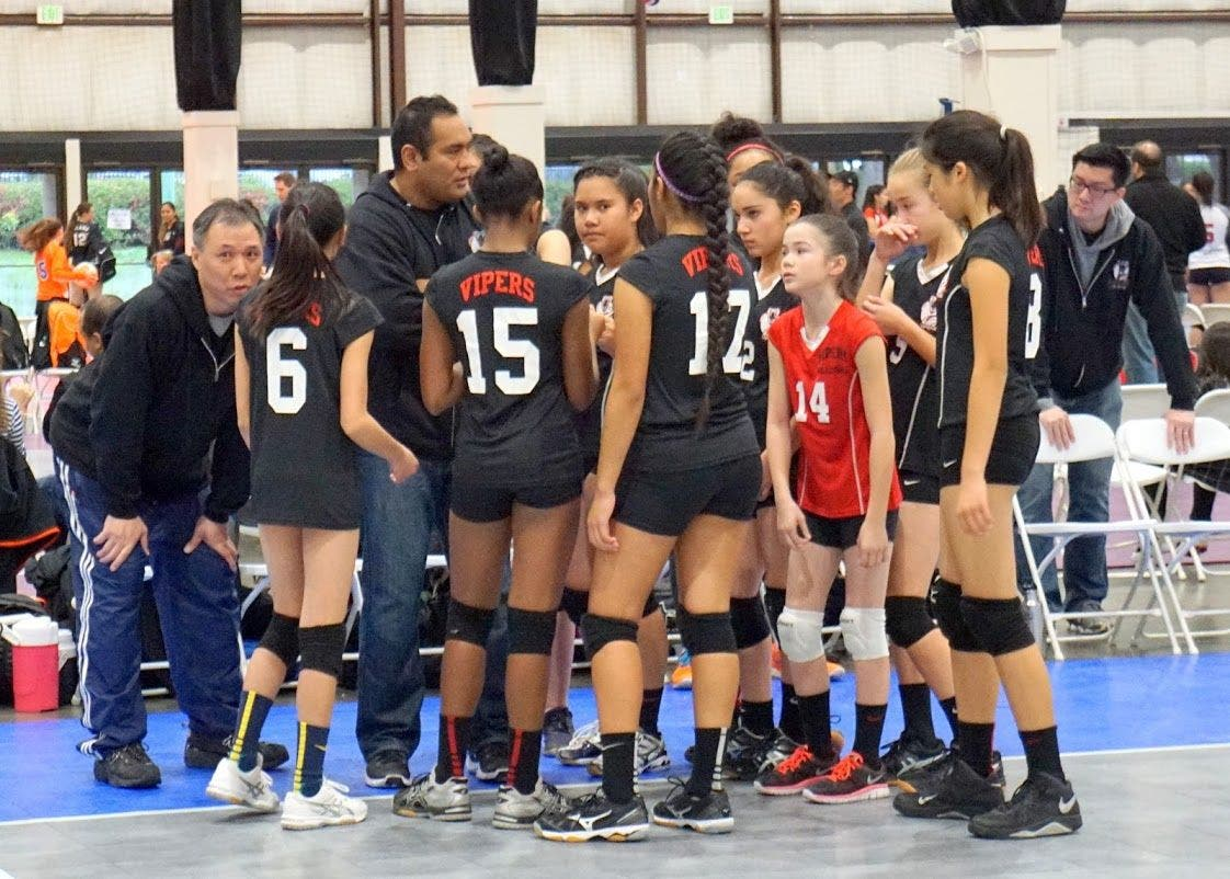 Vipers Volleyball Tryouts Alameda Ca Patch