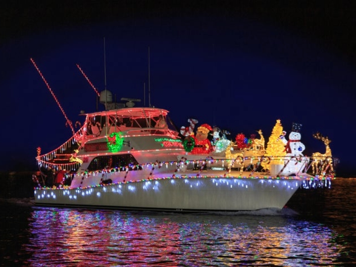 Bear Takes In The Holiday Lights   Boat Parade   Patch PM