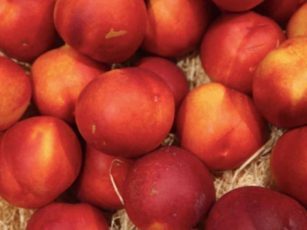 Listeria-Tainted Fruit: Recall In Illinois | Across Illinois