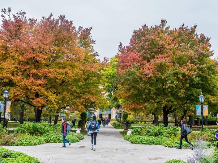 How Illinois Grad Schools Rank Among Top Programs: U.S. News