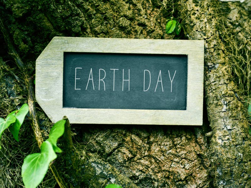 Volunteers Needed For Gwinnett Countys Earth Day Event