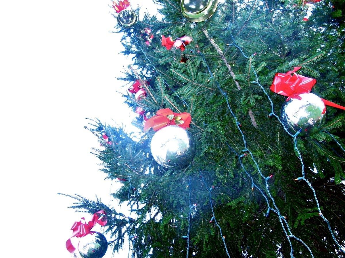 Natick Christmas Tree Lighting 2021