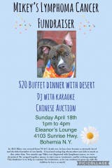 Fundraiser April 18th Eleanor's Lounge Bohemia